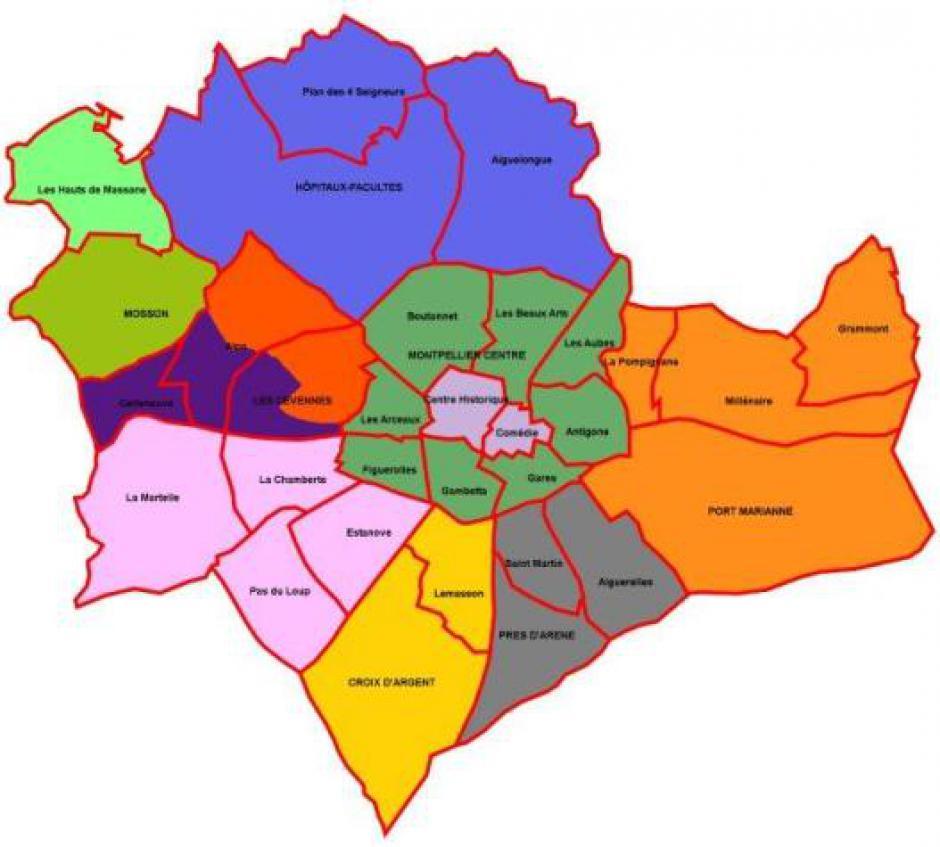 Les cellules de la Section de Montpellier